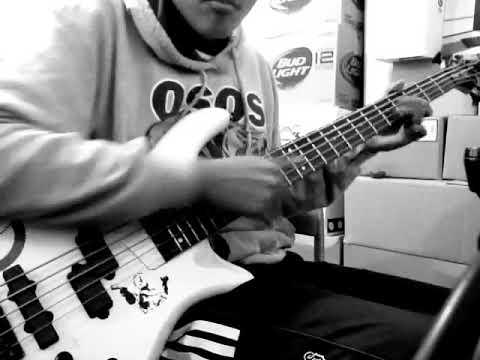 Primus- American Life (Bass/Bajo Cover) | LOCODanny555