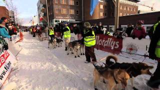 Malamute Quest on Finnmark sled dog race #4 - Race start