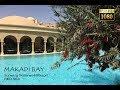 MAKADI BAY - Sunwing Waterworld Resort/ RED SEA RESORT