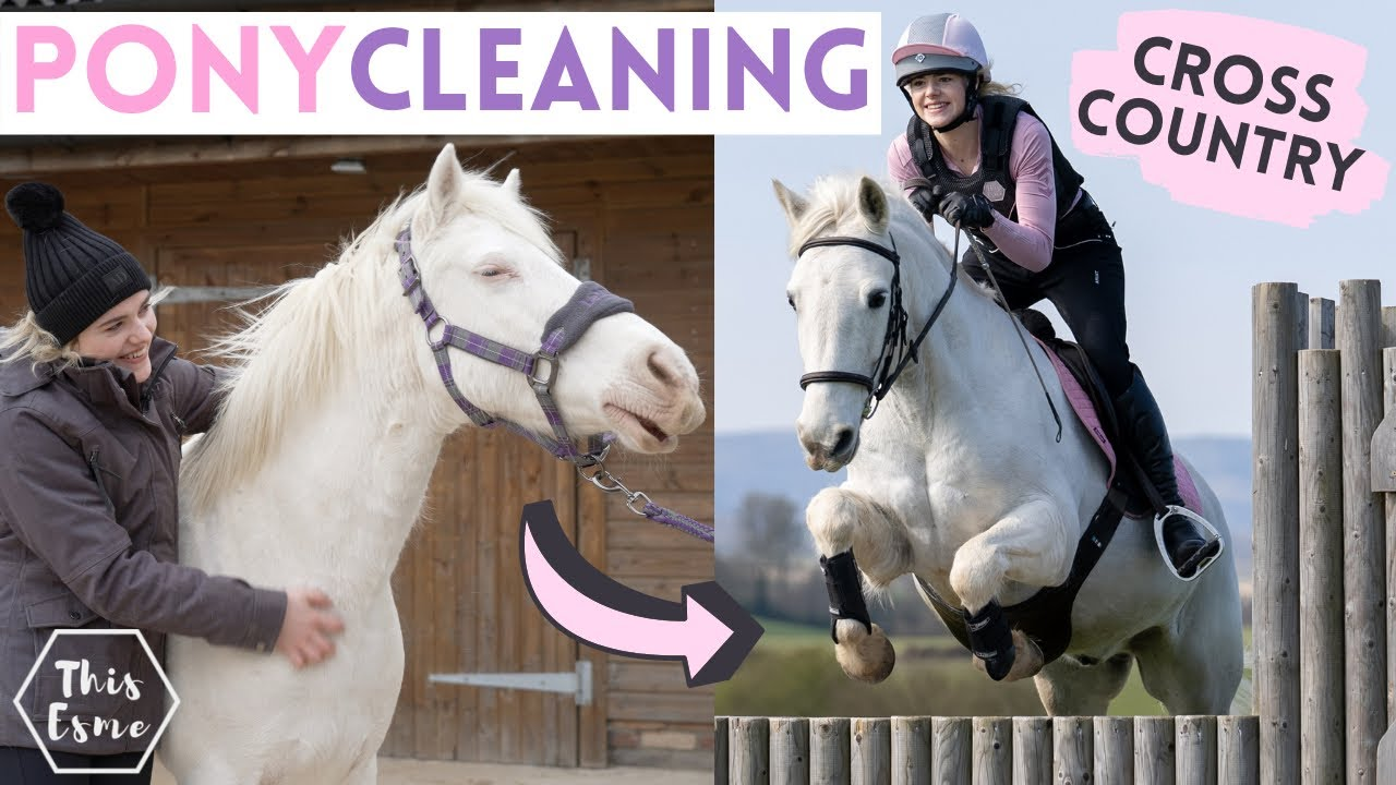 Download Pony Cleaning + Cross Country! AD | This Esme