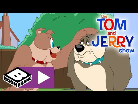 The Tom and Jerry Show | New Dog | Boomerang UK 🇬🇧