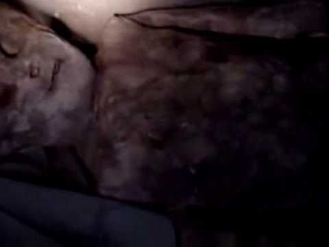 Humanoid preserved from Andes ufo crash