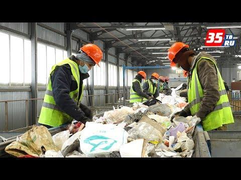 Около 300 тонн мусора ежедневно принимает сортировочная станция в Вологде
