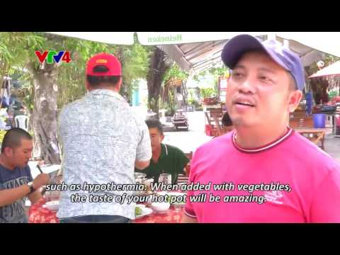 Chronicle - Wandering around Mekong Delta - Episode 33 + 34