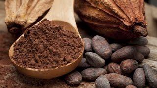 В чем польза какао для здоровья