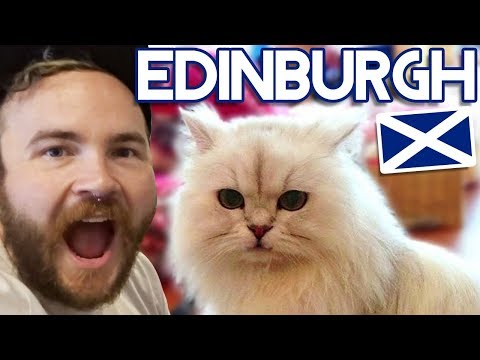BRITAIN'S FIRST CAT CAFE! | Edinburgh Travel Vlog