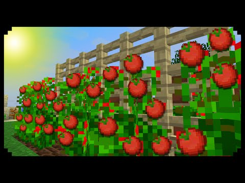 ✔ Minecraft: How to make Tomato Plants