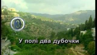 ОЙ ЧОРНА Я СИ, ЧОРНА — караоке Українська народна пісня Ukrainian folk song karaoke