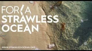 Plastic Straw Bans: Good or Bad?