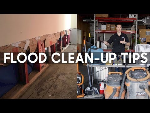 Flood Clean-up - 5 Steps Including Mold...