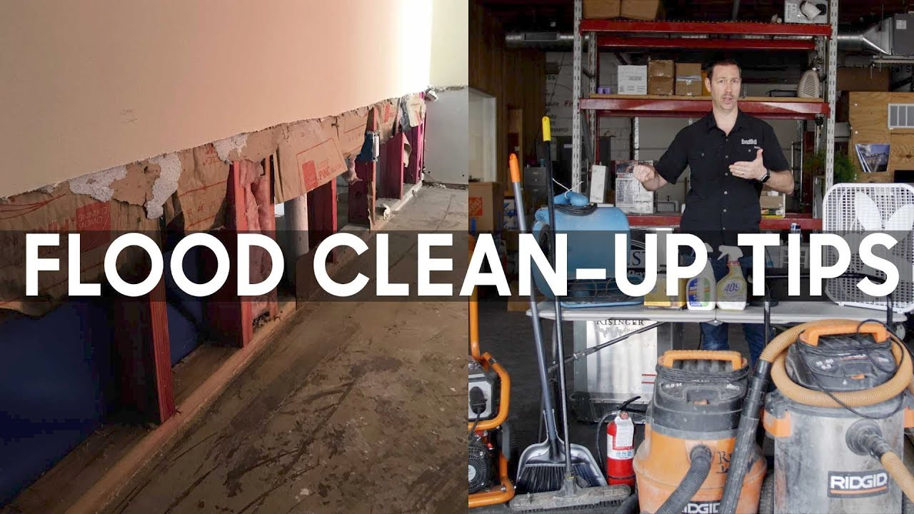 Flood Clean Up 5 Steps Including Mold Control