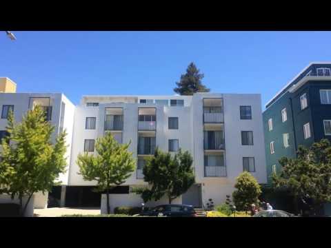 Sunny Day in Berkeley, CA