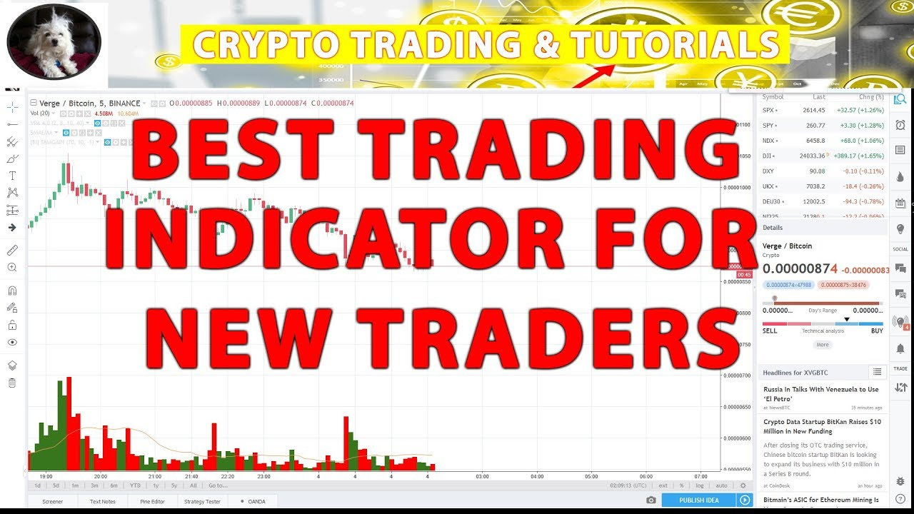 Best TradingView Indicator for New Traders