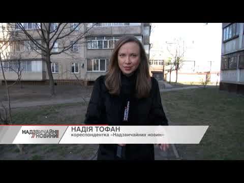 В Києві оскаженілий пітбуль ледве не загриз жінку