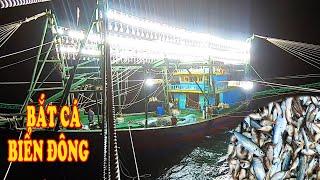 Gambar cover Xem Tàu Đánh Cá Biển Đông - Lần Đầu Bắt Được Mẻ Cá Này #78