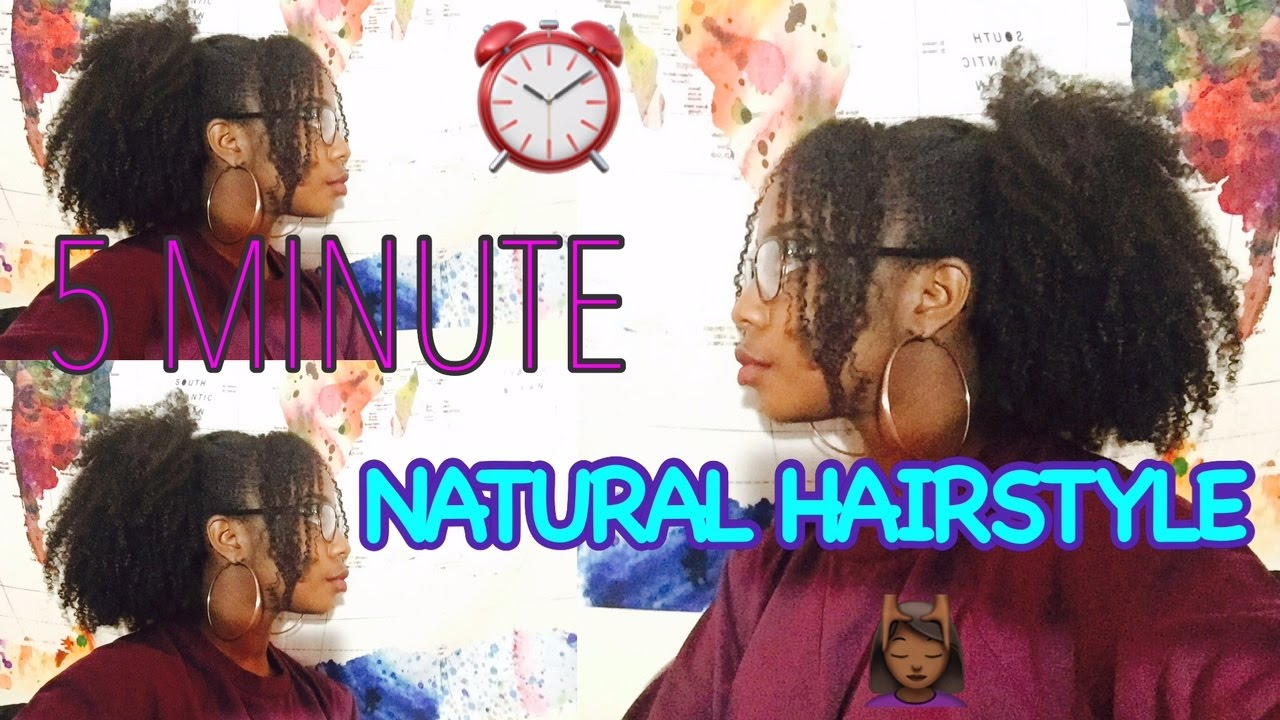5 minute natural hairstyle quick