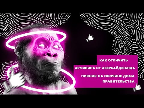 Лайк Дарвина. Пикник на обочине и как отличить армянина от азербайджанца.