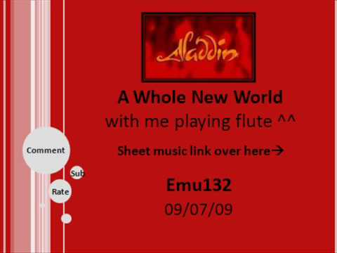 A Whole New World  with me playing flute :