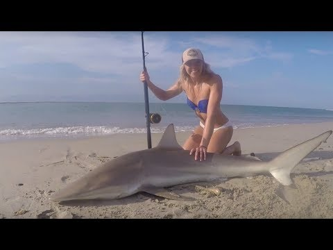 MONSTER BLACKTIP SHARK Fishing: Outer Banks, North Carolina Shark Landed on Beach & HOW TO