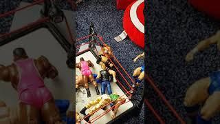 Josh's Wrestling Figures