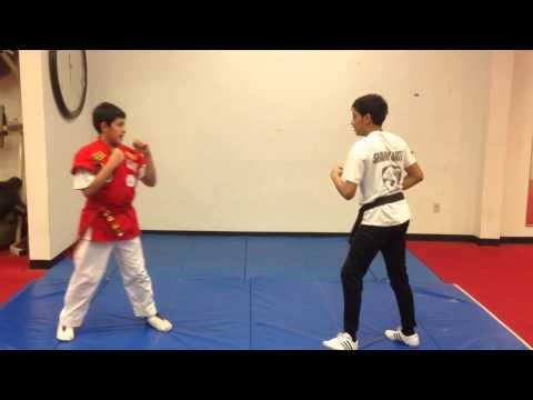 Shark Karate Kung Fu San Soo Basic Judo Throws Curriculum.