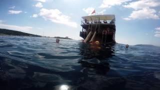 Roadtrip Romania - Serbia - Muntenegru - Croatia. Boat Trip Kotor. 4th and 5th day