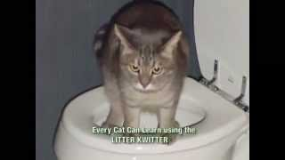 Litter Kwitter - As Seen On TV Toilet Training For Cats - The Unique Litter Kwitter System