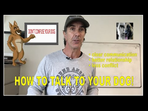 How to TALK to YOUR DOG - Robert Cabral - Dog Training Video