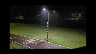 비오는 밤 가로등