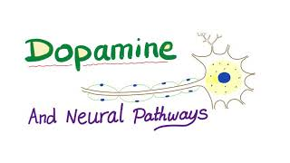 Dopamine And Neural Pathways | Physiology And Pharmacology
