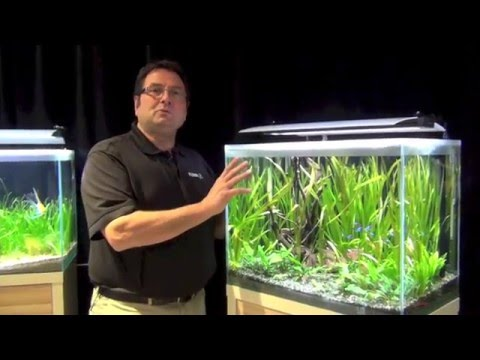 Fluval Fresh Aquariums