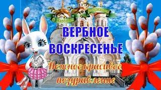 Вербное воскресенье! Красивое поздравление и пожелание с Вербным воскресеньем!