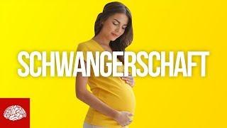 Krasse Fakten zur Schwangerschaft und Geburt