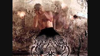 Watch Thalarion Singer In The Mist video