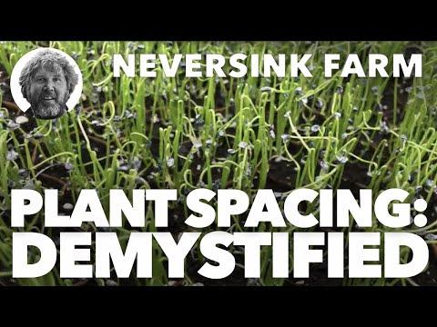Plant Spacing - Demystified