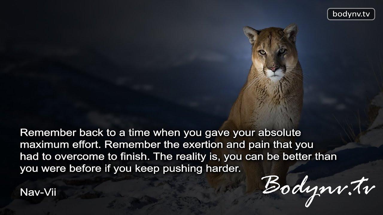 Quotes Effort Maximum Effort  Motivational Quotes  Inspirational Quotes