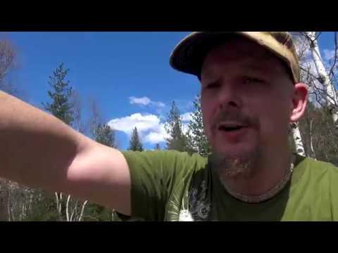 Abandoned Cars Trail B.C. part 2