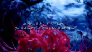 予告編 映画「花の億土へ」 石牟礼道子主演、金大偉監督作品