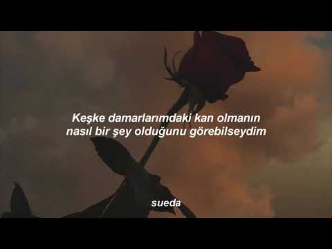 halsey---clementine-(türkçe-Çeviri)