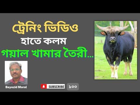 Training module - Goyal Farming, বাণিজ্যিক গয়াল বা পাহাড়ী গরুর খামার করে কোটি টাকা আয়ের কৌশল