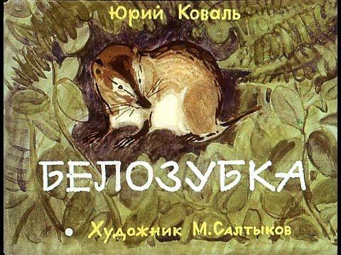 Белозубка Ю. Коваль (диафильм озвученный) 1982 г.