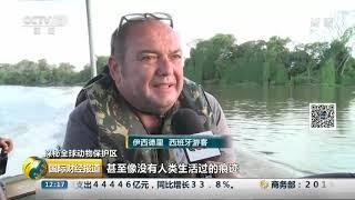 [国际财经报道]探秘全球动物保护区 巴西潘塔纳尔湿地:世界最大湿地 珍稀野生动物乐园| CCTV财经