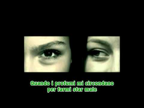 The Cinematic Orchestra - To build a home  (Traduzione italiana)