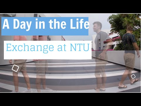 Exchange In Singapore: A Day In The Life At NTU