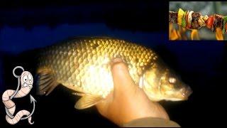 Рыбалка ночью и на зорьке. Старый пруд.