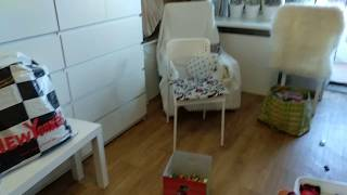 Уборка 205 корзины со свалкой)