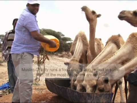 Food Distribution Somalia.mpg