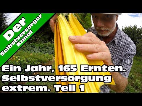 Selbstversorgung extrem. 165 Ernten in einem Jahr Teil 1