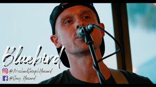 Miranda Lambert's 'Bluebird' covered by Joey Howard