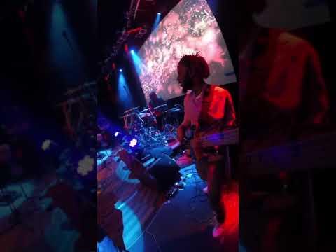 Bass Cam - Arrested Development, Live in Prague.